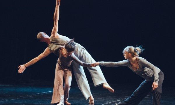 Contemporary dance festival «Zelyonka Fest» у Києві